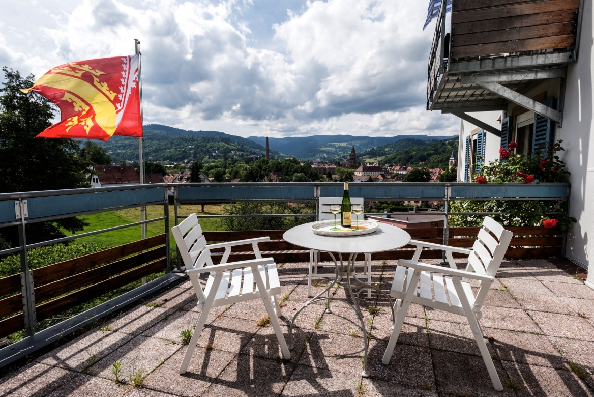 1st floor terrace West MaisonBellevue_Munster 28