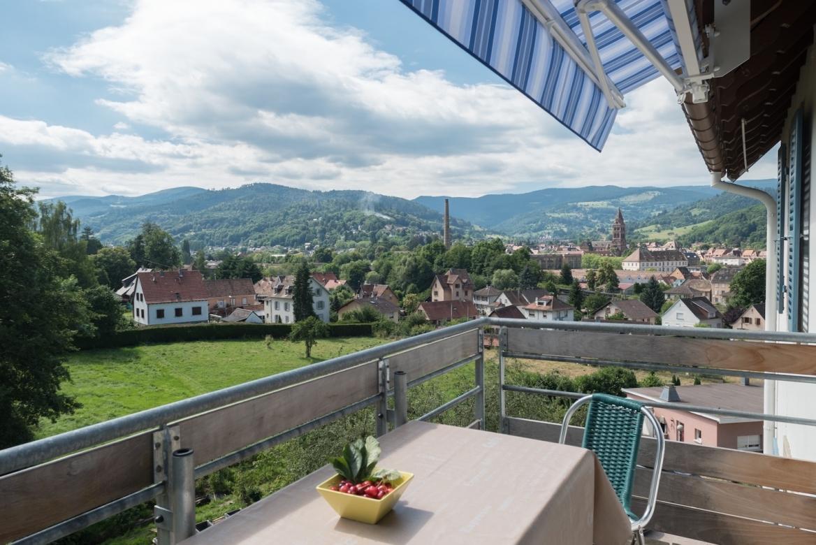 2nd floor kit:liv. terrace view MaisonBellevue_Munster-58